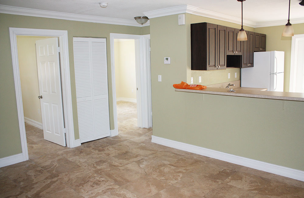 living-kitchen-area